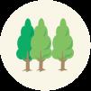 森林のエキスのもとになる「常緑広葉樹」の樹皮をはがし、350℃前後で2~3週間かけて蒸し焼きにします。