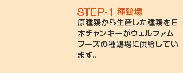STEP-1 種鶏場 原種鶏から生産した種鶏を日本チャンキーがウェルファムフーズの種鶏場に供給しています。ここでブロイラーの親鳥を育て、種卵(しゅらん)を生産します。